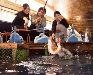旅行宴会/自分で魚を釣る